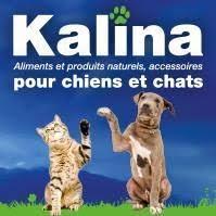 Kalina One – Croquettes gratuites