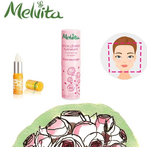 Stick à lèvres Melvita gratuit
